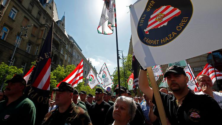 2013-05-04T113354Z_01_BAL07_RTRMDNP_3_HUNGARY-PROTEST.JPG1886801394778520116.jpg
