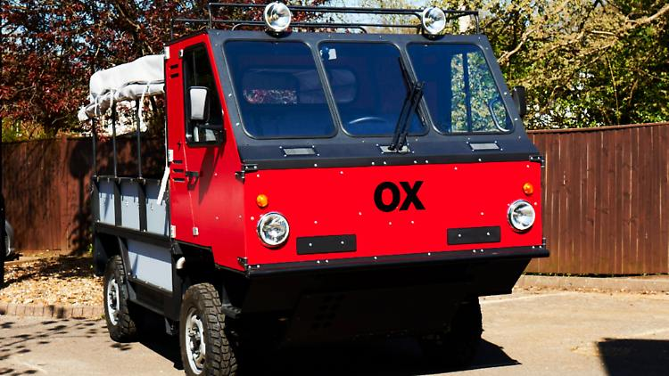 Ox240513.jpg