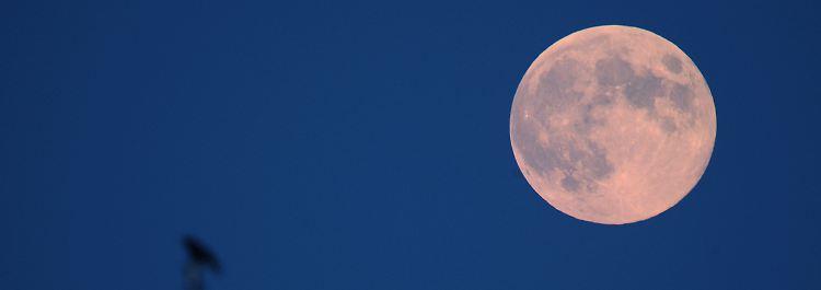Thema: Mond