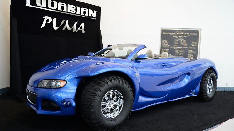 Youabian-Puma-2[2].jpg