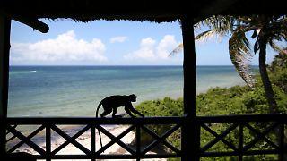 Diani Beach Kenia.jpg