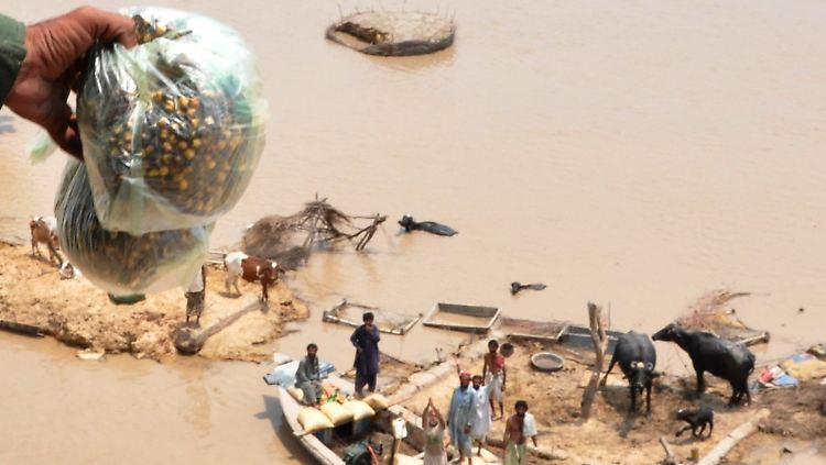 Kampf ums Überleben: Eine von der Jahrhundertflut in Pakistan besonders bedrohte Familie in der Provinz Punjab bekommt Lebensmittel aus einem Armeehubschrauber zugeworfen. Die UNO schätzt, dass von den Überschwemmungen 13,8 Millionen Menschen betroffen sind. In Pakistan kosteten die Fluten bislang mehr als 1800 Menschen das Leben.