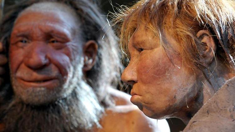 Europäer haben dreimal mehr am Fettstoffwechsel beteiligte Gene, die von Neandertalern stammen, als Asiaten oderAfrikaner. Foto: Federico Gambarini