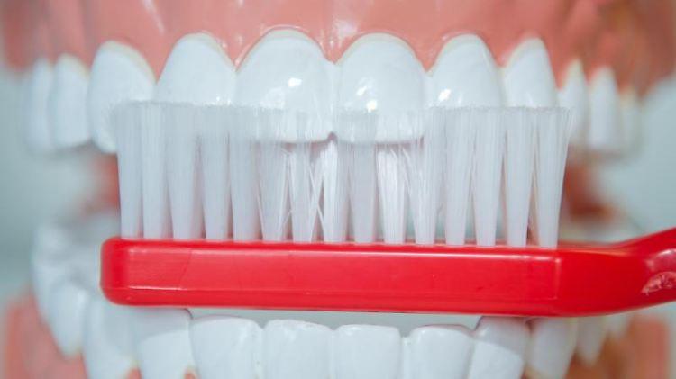 Medizinischer Erfolg: In den 1980er Jahren hatten die 12-Jährigen in Deutschland durchschnittlich sieben kariöse Zähne - heute sind es 0,7. Foto: Stefan Sauer