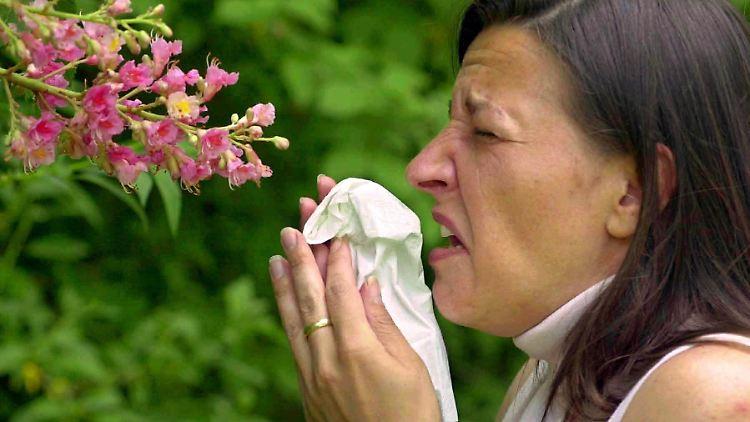 allergie.jpg