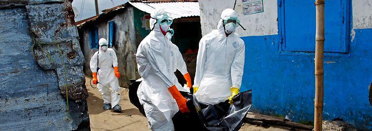 Tödliche Seuche: Ebola