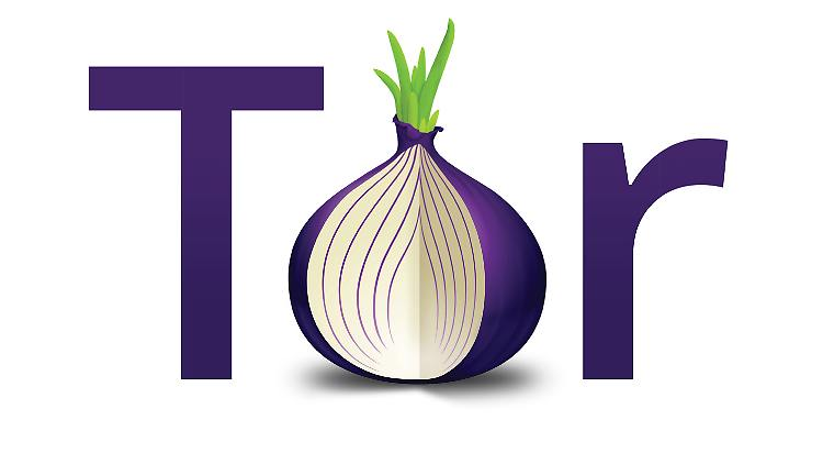 TorLogo-v2-onion1.jpg
