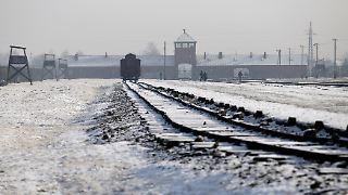 Thema: Auschwitz