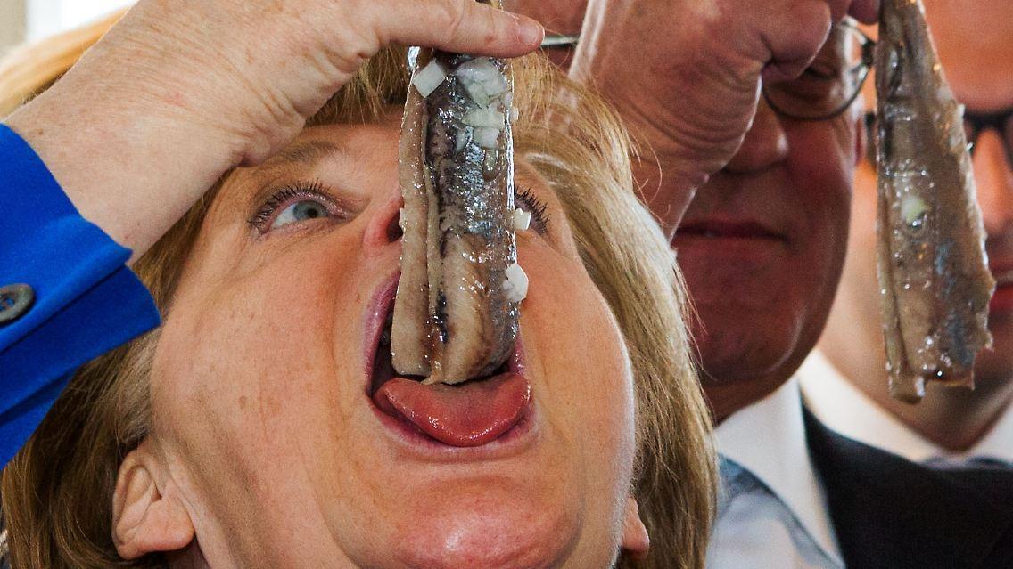 Merkel Fisch
