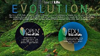 opentreeoflife.jpg