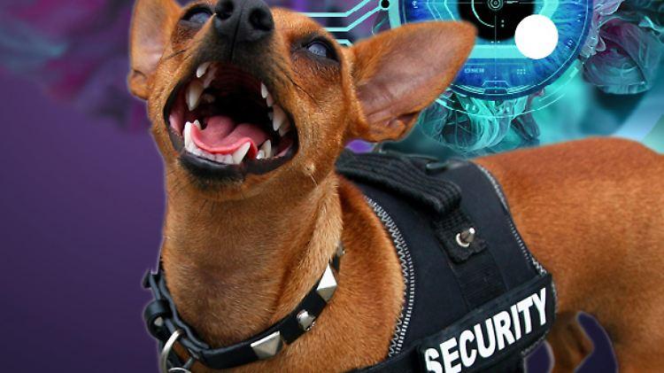 Der vorinstallierte Microsoft-Virenwächter macht seinen Job einwandfrei.
