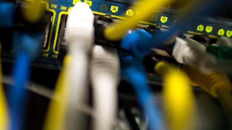 Netzwerkkabel in einem Serverraum: Der Erpressungs-Trojaner verbreitet sich «Locky» auch in Cloudspeichern. Foto: Matthias Balk