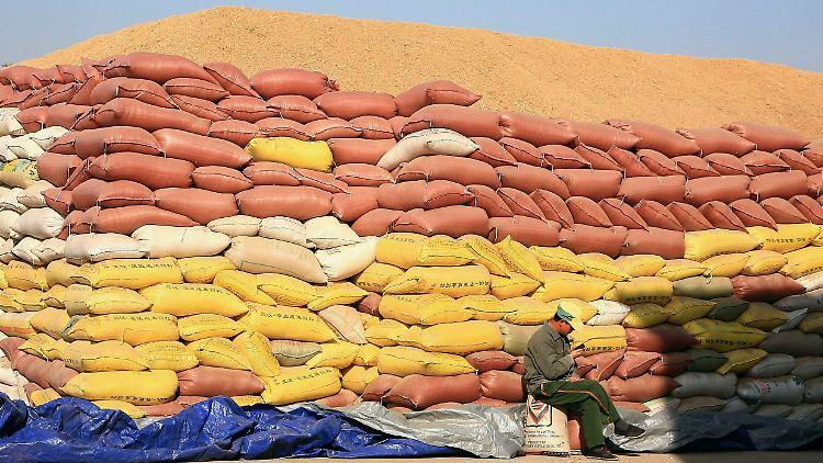 Hier fällt garantiert kein Sack Reis um: Gut gestapelt wartet dieser Reis auf seine Weiterverarbeitung. China rechnet in diesem Jahr mit einer guten Ernte, die das Ergebnis des letzte Jahres übertreffen wird.