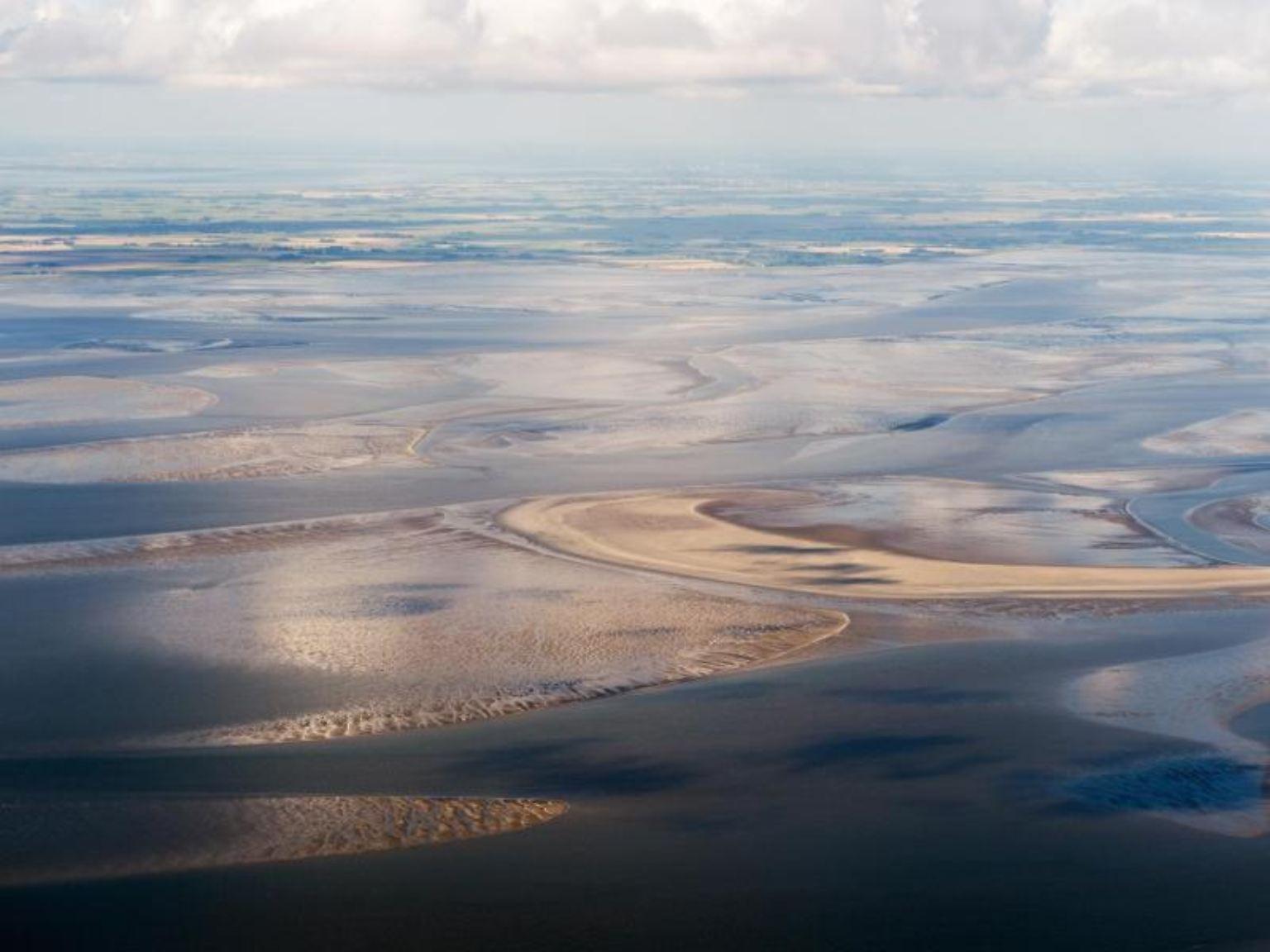 Die 4400 Quadratkilometer große Landschaft vor der Westküste Schleswig-Holsteins ist Heimat von geschätzt 10 000 verschiedenen Tier- und Pflanzen-Arten.Foto: Daniel Reinhardt/Archiv