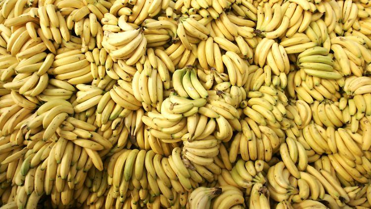 Bananen6.jpg
