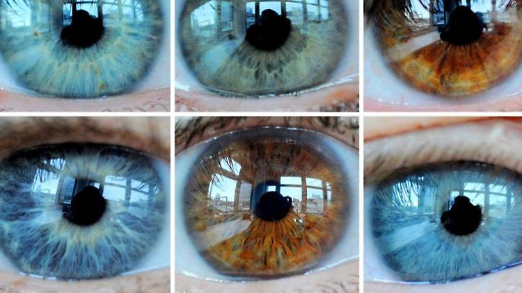 Der Grüne Star ist heimtückisch: Etwa eine halbe Million Bundesbürger haben einen erhöhten Augeninnendruck - die meisten merken davon nichts.jpg
