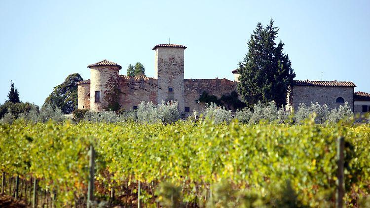 Zwischen Vinci Vino Und Golf So Wunderbar Ist Die Toskana N Tvde