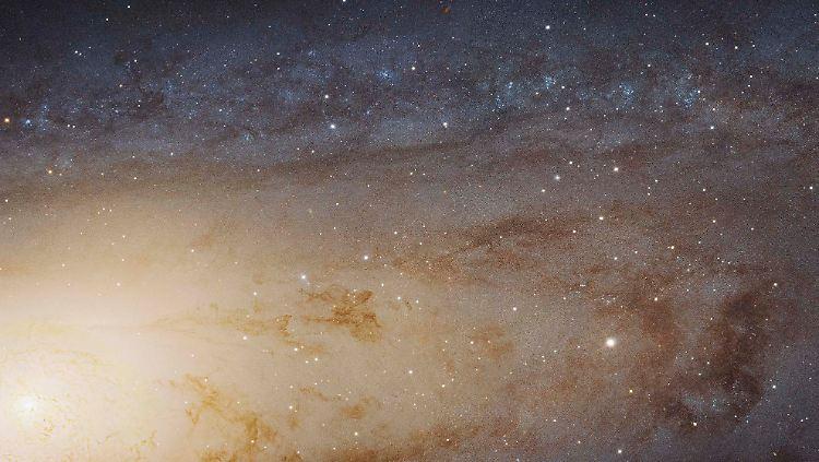 Google Andromeda.jpg