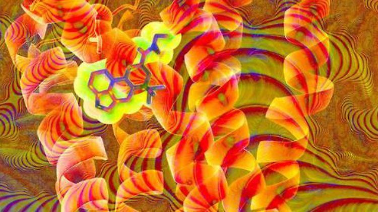 LSD.jpg