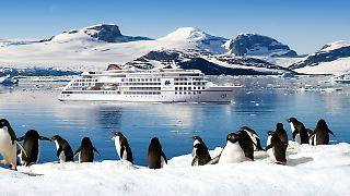 Nr. 6 HLC_Expi-Neubau_Seitenansicht_Pinguin mit Hintergrund.jpg