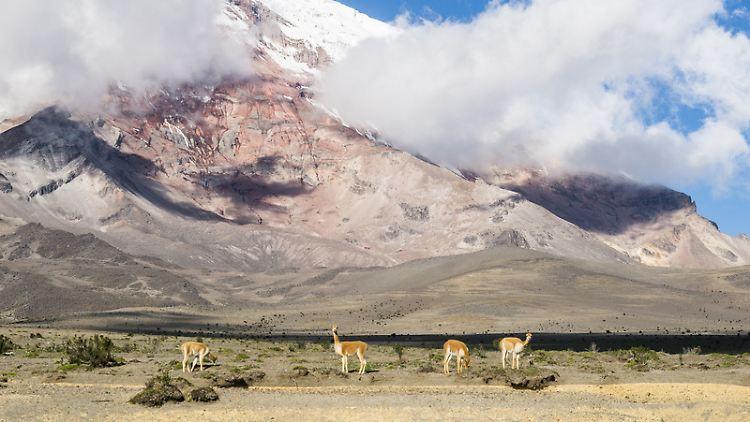Chimborazo.jpg