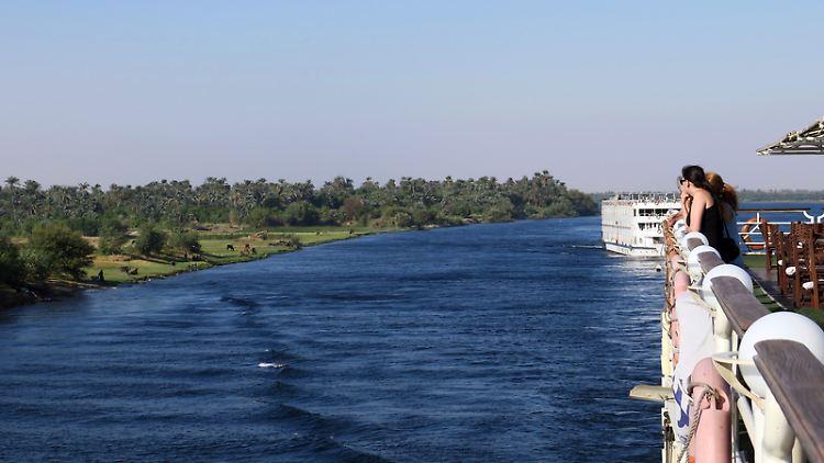 Wo der Nil Ägypten mit Wasser versorgt, ist das Land sattgrün. Entlang des Ufers wachsen Palmenhaine und saftige Weidewiesen für die Kühe.jpg