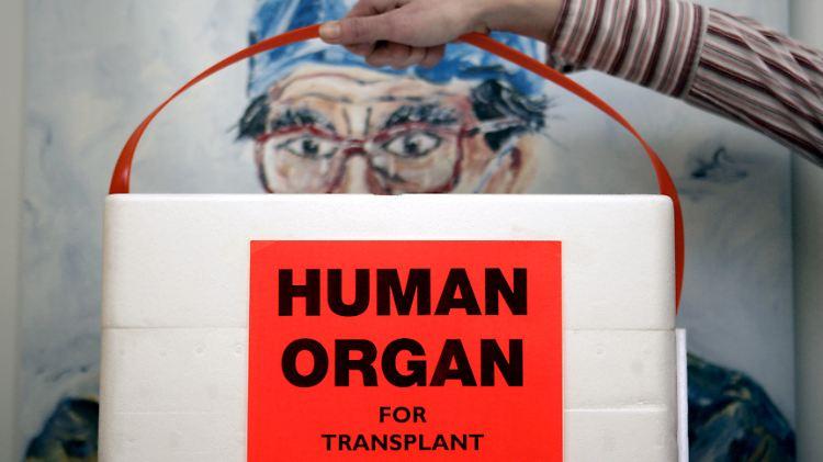 organspende.jpg