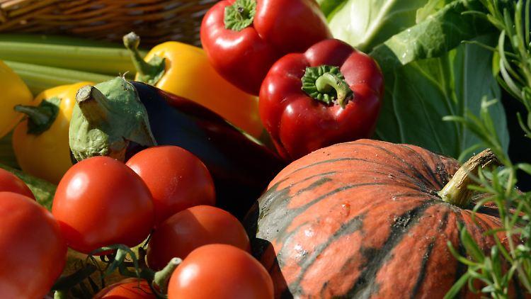 US-Forscher haben untersucht, ob sich eine Low-Fat oder Low-Carb-Diät zum Abnehmen besser eignet.