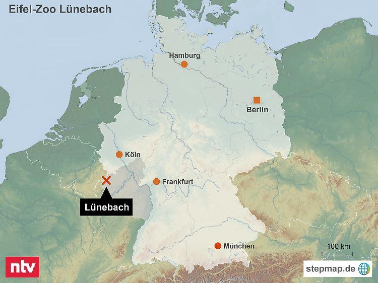 Karte Eifel.Bär Aus Eifel Zoo Erschossen Vermisste Raubtiere Verursachen Chaos