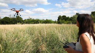 Tierschützerin Dagmar Seidenbecher steuert eine Drohne über ein Feld bei Gera
