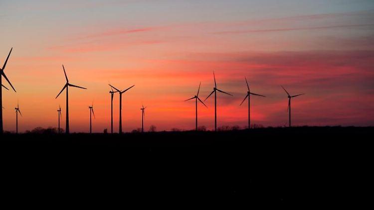 Windräder zeichnen sich vor der untergehenden Sonne ab. Foto:Stefan Sauer/Archiv