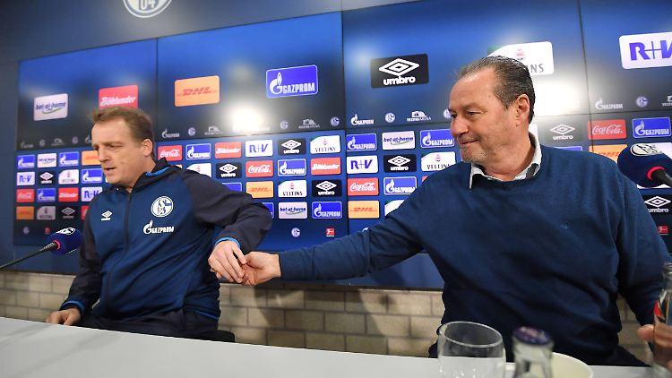 Mike Büskens und Huub Stevens sollen den FC Schalke wieder in die Spur bringen.