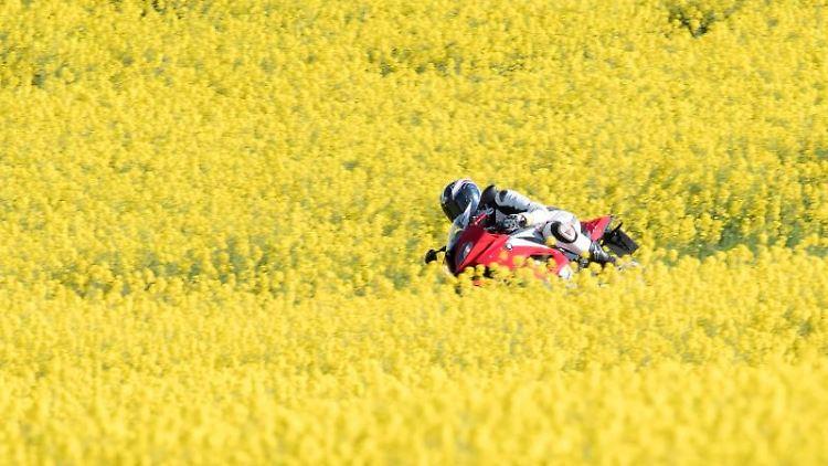 Ein Motorradfahrer ist auf einer Straße zwischen zwei gelb blühenden Rapsfeldern unterwegs. Foto: Armin Weigel/Archiv