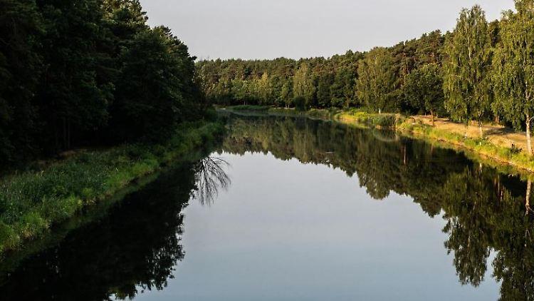 Die Bäume am Oder-Havel-Kanal spiegeln sich im Wasser. Foto: Paul Zinken/Archiv