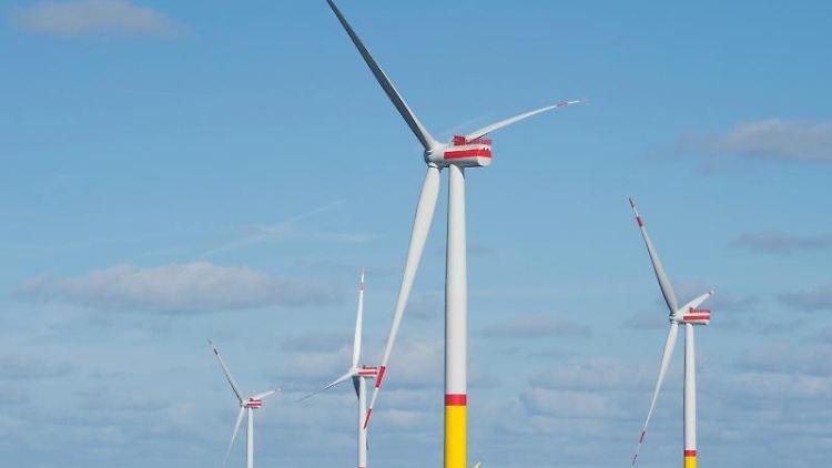 Blick auf den Offshore-Windpark