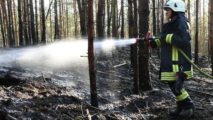 Die Feuerwehr dämmt einen Waldbrand ein. Foto: Julian Stähle/Archivbild