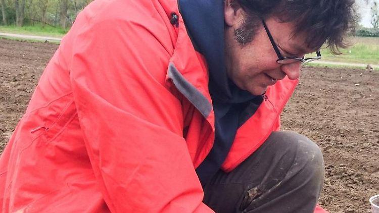 Der Biologe Philipp Gienapp gräbt auf einem Maisfeld der Agrargesellschaft Zinzow. Foto: Birgit Sander
