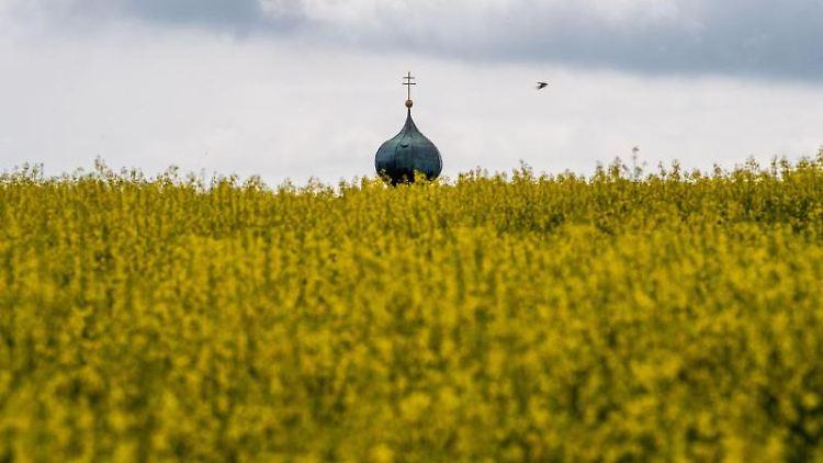 Eine Schwalbe fliegt vor einer Kirchturmspitze vorbei, die vor Dunklen Wolken hinter einem Rapsfeld zu sehen ist. Foto: Lino Mirgeler/Archiv