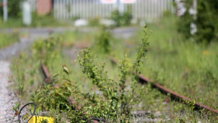 Die Kamp-Lintforter Eisenbahngesellschaft Niederrheinbahn GMBH hat die Bahntrasse von der RAG gekauft. Foto: Roland Weihrauch/Archiv