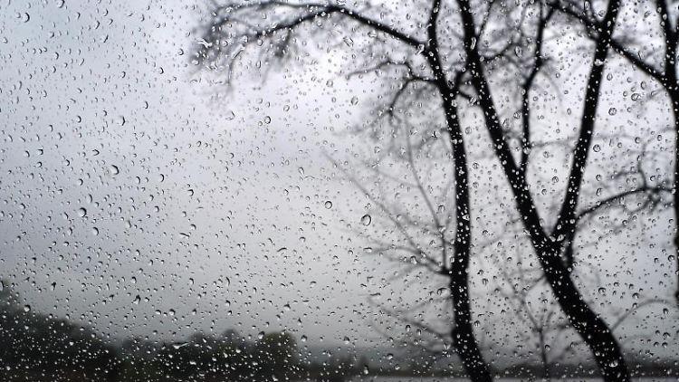 Bäume sind hinter einer regennassen Autoscheibe zu sehen. Foto: Karl-Josef Hildenbrand/Archivbild
