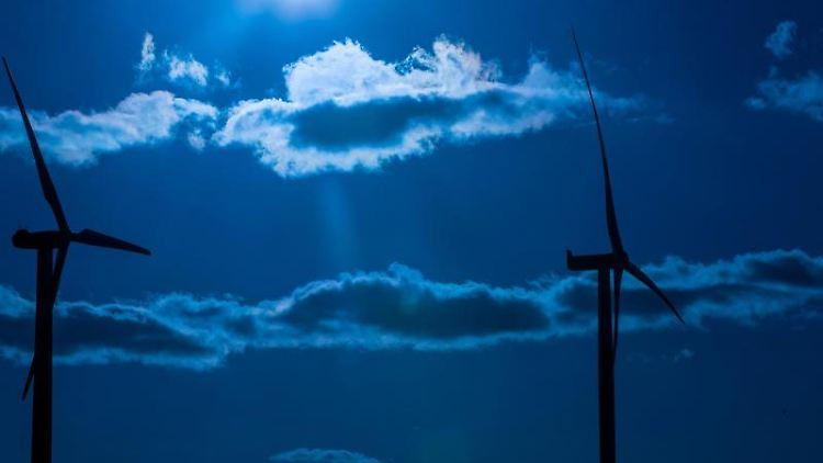 Windkraftanlagen in einem Windpark. Foto: Jens Büttner/Archivbild