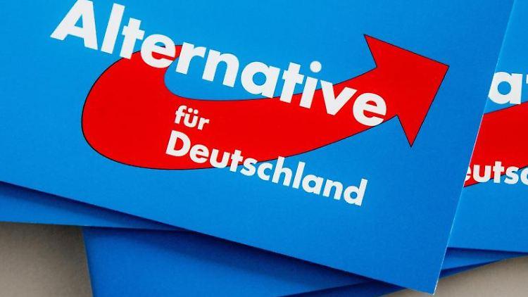 Das Logo der Alternative für Deutschland (AfD) ist auf Parteibroschüren abgedruckt. Foto: Markus Scholz/Archivbild