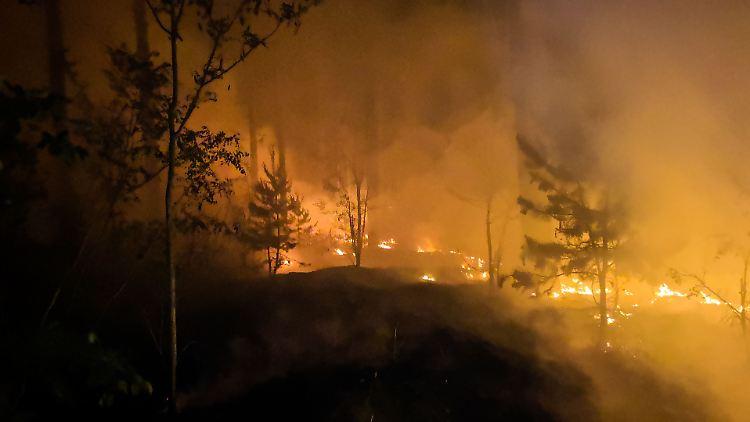 waldbrand brandenburg 2020
