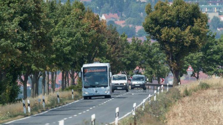 Ein Bus und Autos fahren auf einer Straße. Foto: Arne Immanuel Bänsch/Archivbild