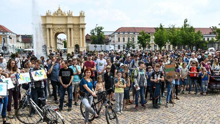 Schülerinnen und Schüler demonstrieren mit Protestplakaten während des Friday for Future. Foto: Julian Stähle