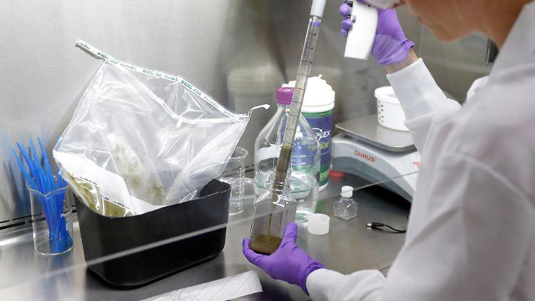 US-Patient nach Stuhltransplantation tot