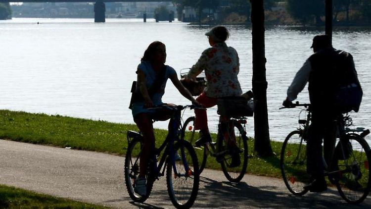 Radler sind am Mainufer auf den Main-Radweg unterwegs. Foto: Roland Holschneider/Archivbild
