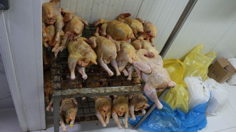 2 Albania meat.jpg