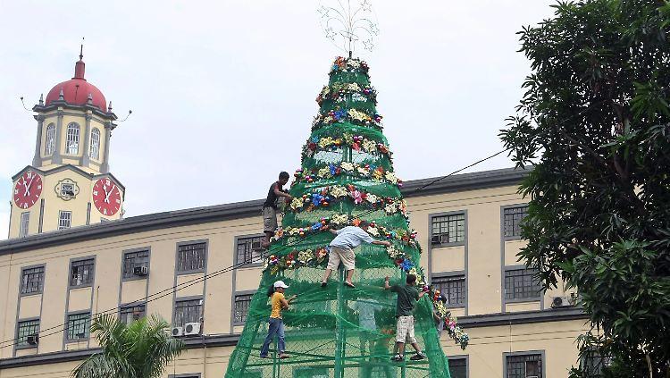 Wann Wird In New York Der Weihnachtsbaum Aufgestellt.Frage Antwort Nr 151 Welcher Weihnachtsbaum Ist Der Beste N