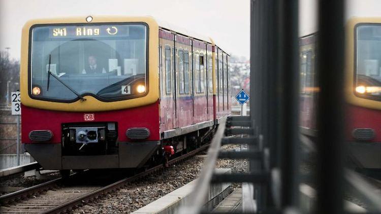 Ein Zug der Linie S41 der Berliner S-Bahn. Foto: Gregor Fischer/Archivbild